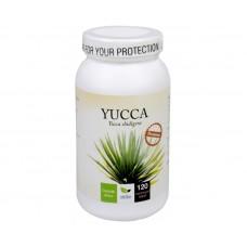Yucca Premium 120 kapslí